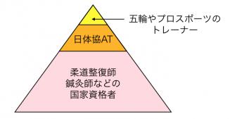 スポーツトレーナーのキャリア・ピラミッドの一例